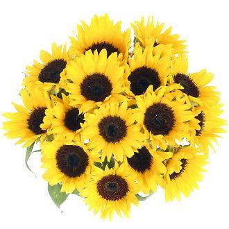 Fleurs tournesol - Bouquet de tournesol ...